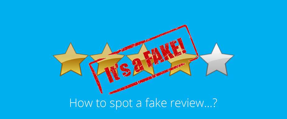 What are fake reviews?